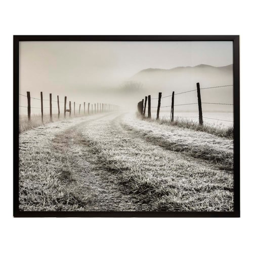 Frosty Pasture