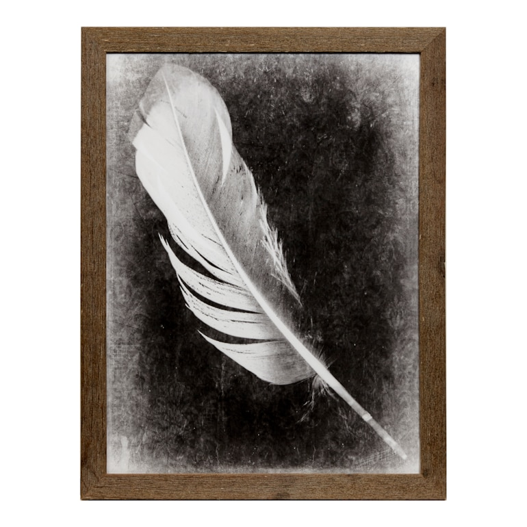 Inverted Feather I
